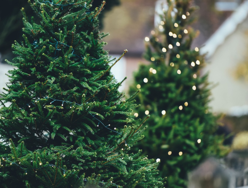 Seasonal renovation to conduct a season basedbusiness