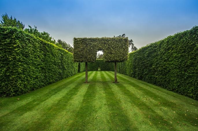 garden-1435518_1920